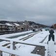 Kanazawa_0220