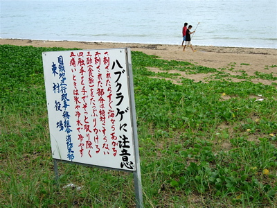 okinawa_1d